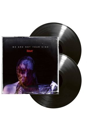 WE ARE NOT YOUR KIND (2LP)